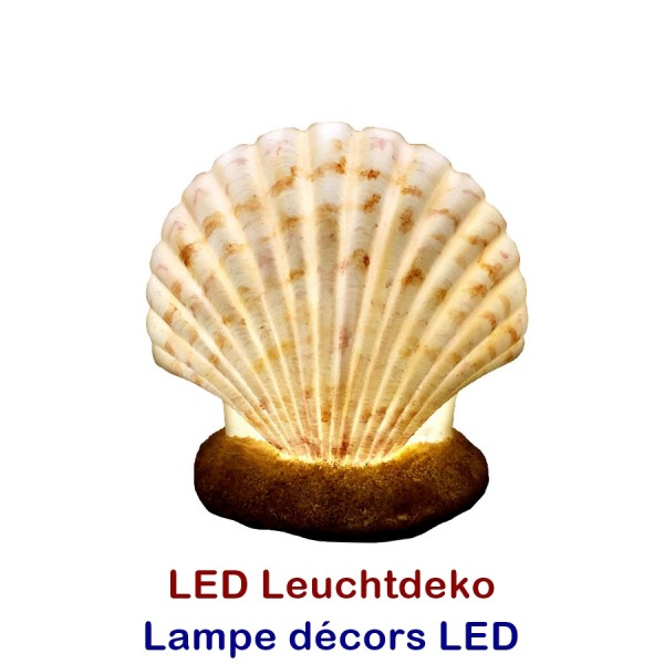 LED Muschel Leuchte 18x12x17cm mit 6 LED
