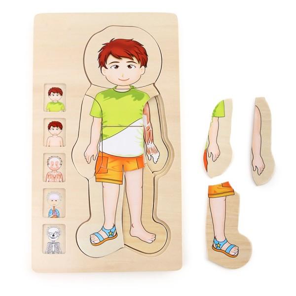 Holz- Steckpuzzle Anatomie Junge Tim